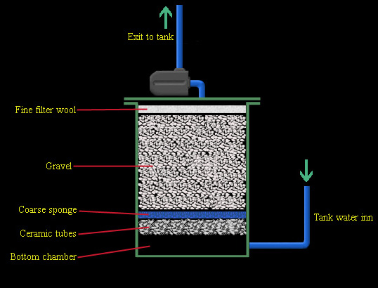 Plans for a canister filter with back washing